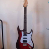 SEGOVIA STRATOCASTER (First electric Guitar)